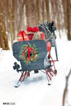 Merry Christmas to all! Dashing through the snow in a one horse open sleigh. Christmas Scenes, Noel Christmas, Country Christmas, Winter Christmas, All Things Christmas, Christmas Sleighs, Winter Snow, Christmas Couple, Father Christmas