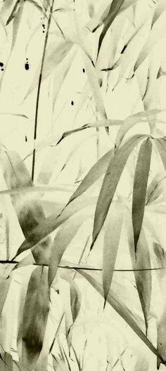 ©yama-bato ,Bamboo 3 ,2011  Claude Monet's garden at Giverny  By yama-bato