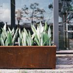 The Trough, an unearthed oldie but ohh such a goodie #thetrough #rustedplanter #planters #unearthedgarden #theunearthedtrough #madebyus #handmadeinaustralia #comeoutdoorswithus