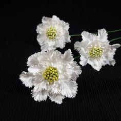 "45 aprecieri, 1 comentarii - Marianne (@marianneweddingdesign) pe Instagram: ""Scabiosa... #creppaperflower #creppaper #cartotecnicarossi #scabiosa #flowers #flori #handmade"" My Flower, Flowers, Floral, Instagram, Jewelry, Jewlery, Jewerly, Schmuck, Jewels"