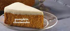 Pumpkin Cheesecake Tea by DavidsTea