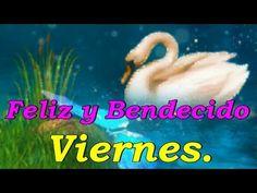 Feliz y Bendecido Viernes - VER VÍDEO -> http://quehubocolombia.com/feliz-y-bendecido-viernes    Feliz y bendecido viernes, Dios te bendiga grandemente en este bello día. —————————————— Nuevos Vídeos Casi Todos Los Días,...