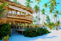 Jellyfish beach restaurant in Punta Cana is awesome day and night.