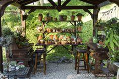 Outdoor potting area in Jeanne Meadow's Garden - www.succulentsandsunshine.com