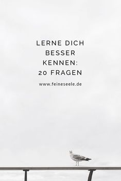 In diesen 20 Fragen, steckt das Potential unser Leben auf den Kopf zu stellen un… In these 20 questions, there is the potential to turn our lives upside down and get to know each other even better. 20 Questions, This Or That Questions, Self Development, Motivation Inspiration, Self Improvement, Good To Know, Happy Life, Self Love, Decir No
