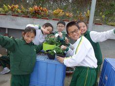延續學習:離開前把親手制作的盆栽帶回學校,利用剛認知的知識繼續照盆栽!