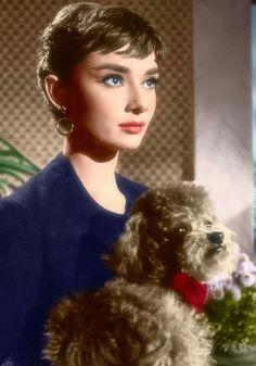 """Audrey como """"Sabrina"""", 1954 Audrey as """"Sabrina"""", 1954 Audrey Hapburn, Audrey Hepburn Mode, Audrey Hepburn Photos, Katharine Hepburn, Audrey Hepburn Bangs, Classic Hollywood, Old Hollywood, Actrices Hollywood, British Actresses"""