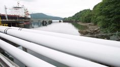 Trans Mountain pipeline expansion granted environmental certificate by B.C. government