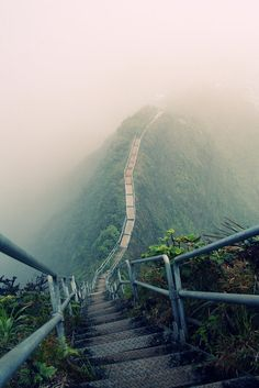 the Haiku Stairs, also called the Stairway to Heaven, island of Oahu (Hawai)