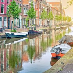 Leiden is net een schilderij. Een prachtige nazomermiddag | Leiden is like a painting. A beautiful late summer afternoon #Leiden #Grachten #Canals #Bootjes #Boats #Zomer #Summer #StudereninLeiden #StudyinLeiden #LeidenUniversity #UniversiteitLeiden