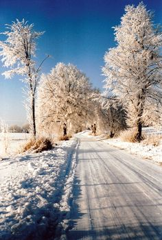 Winter in Masuren