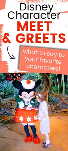 The best tips and tricks for a great Disney World character meet and greet. Includes funny Disney character interactions and poses, which characters are at Magic Kingdom, the best pen for Disney autographs, and what to ask Tinkerbell at Disney. Disney On A Budget, Disney World Vacation Planning, Walt Disney World Vacations, Disney Planning, Disney Trips, Disney Travel, Disney World Secrets, Disney World Outfits, Disney World Magic Kingdom