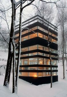 Forest house. Modern architecture contrasted with organic shapes of the forest. Exterior Glass