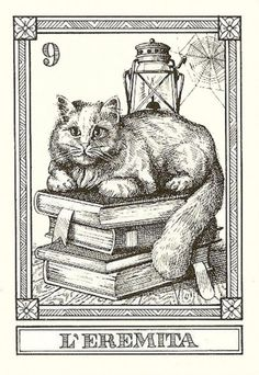 Cat tarot cards. I just bought these! Just four cards, The Hermit, Justice, Death, and Temperance. Gonna put them in a frame.