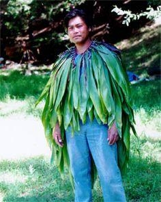 The Ti Plant Called Ki