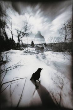 From the Pinhole Dream Series by John Fobes. Home nade extreme wide angle cm. Self portrait. Bi-toned in. Pinhole Camera Images, Perspective Photography, Surrealism Photography, Monochrome Photography, Photo Look, My Images, Blog, Fine Art, Black And White