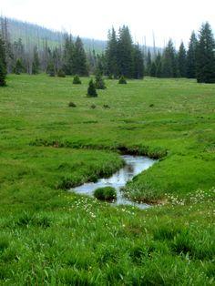 Trail Running in #Sumava NP in #Czech Republic from #Modrova to #Lusental. More: http://trampelpfad.net/