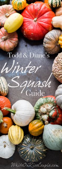Ultimate Winter Squash and Pumpkin Guide | @whiteonrice