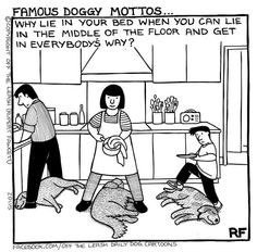 Dogs have a funny way of being adorable, confusing, and frustrating at the same time, but these cartoons by Rupert Fawcett will help you shake it all off your Funny Dogs, Cute Dogs, Funny Animals, Cute Animals, Love My Dog, Puppy Love, Tierischer Humor, Dog Humour, Pet Shop Online