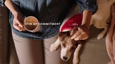 Coffee-mate tv commercial. stirs up a new friendship, happiness and commitment by adopting a dog #jackrussel #adoption