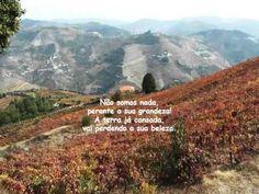 Miguel Torga e a paisagem transmontana
