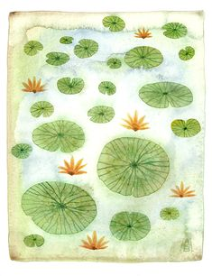 Golly Bard's Drawing Room: Lily Pads