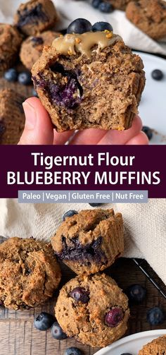 These healthy tigernut flour muffins are loaded with fresh blueberries, sweetened with banana and completely nut free and egg free. This healthy vegan tigernut flour recipe is perfect for breakfast, snacking or packed lunches. #tigernutflour #blueberrymuffins #nutfree #paleomuffins #vegan Flour Recipes, Vegan Recipes, Vegan Gluten Free, Paleo, Tigernut Flour, Baking Muffins, Blue Berry Muffins, Egg Free, Blueberries