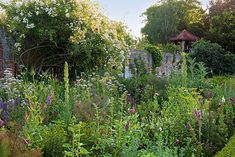 A former vegetable garden that today is used for cut flowers. Self-seeding plants, along with vegetable  plants that are grown for their flowers, play an important role here. To create such a garden requires a lot of knowledge  and many interventions. One gardener has the full-time job of cultivating a 1000 m² (¼ acre) plot – self-seeding gardening at its most intense. Image: Jürgen Becker