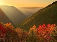 Fall Sunshine, Babcock State Park, West Virginia