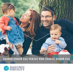 Shared Donor Egg versus Non-Shared Donor Egg