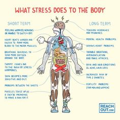 Effects of stress on our health can be detrime Effects of stress on our health ntal. Effects such as memory loss, insulin resistance, heart problems, high blood pressure. the list goes on % Feeling Stressed, Bad Feeling, Chronic Stress, Stress And Anxiety, Chronic Pain, Stress On The Body, Memory Problems, Effects Of Stress, Major Muscles