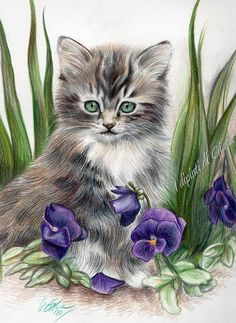 gattino-disegno-pastello-violette_.jpg (614×842)