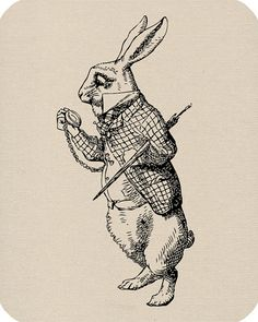 Alice in Wonderland is one of my most favorite books.