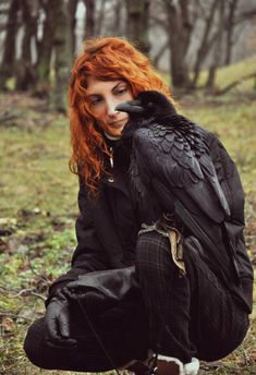 This. This is what I'm going to do! Raven Falconry, or Crow Falconry, which ever egg I find first XD