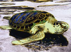 Andy Warhol, Sea Turtle (1985), © 2015 The Andy Warhol Foundation for the Visual Arts, Inc. / Artists Rights Society (ARS), New York.  Click through to explore more of the art from Warhol's Nature exhibit at Crystal Bridges Museum of American Art » bit.ly/CMFallArtWear