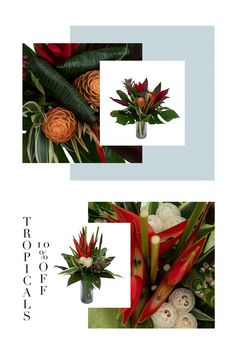 Buy Flowers, Hostess Gifts, House Warming, Greenery, Fields, Bouquet, Tropical, Gift Wrapping, Floral