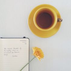 Words and tea (and flower).