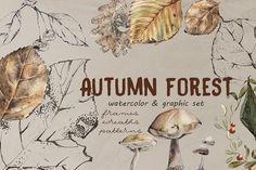 Autumn forest by Undine on @creativemarket