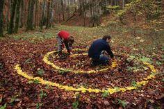 Sylvain Meyer, leaf art, organic art, leaves, nature art, eco art