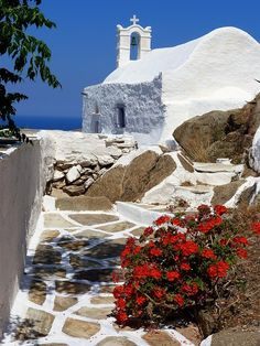 Cycladic church overlooking the sea and red geranium. Chora, Ios island,Greece