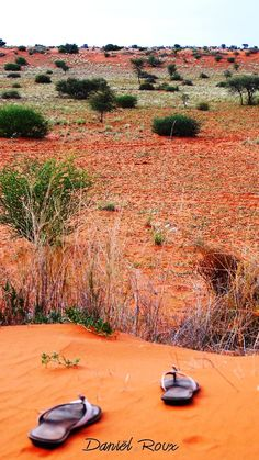 Lose your shoes.... or yourself... in the #Kalahari #Desert #Namibia