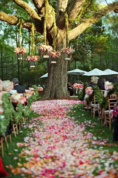 Liz Banfield photo    Colorful pink wedding ceremony by Tara Guerard