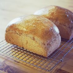 This recipe makes two loaves of delicious, Trim Healthy Mama-friendly sprouted bread – without kneading or spending more than a couple of minutes tending to it. You simply need to be around t…