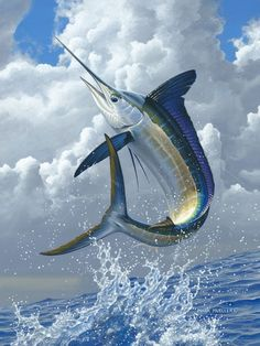 Mark Mueller - White Marlin  Mark's drawings embrace a broad subject matter, most prominent is country or lake scenes that foster a warm sense of memory. Mark has a particular interest and appreciation for everyday lifestyles.