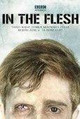 In the Flesh TV episodes