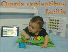 Omnia sapientibus facilia : Tudo é fácil para quem é sábio : All things are easy for the wise