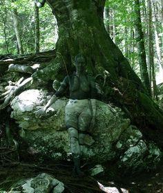 johannesstoetter6 tree