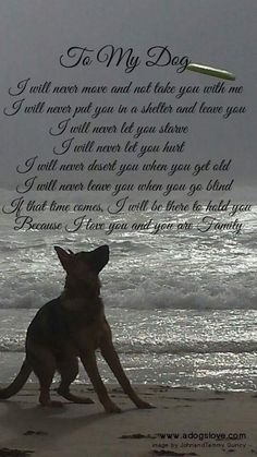 My promise to my dogs too. They'll never leave me and I will NEVER leave them. More