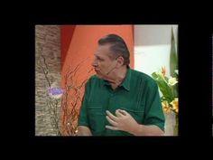 Hermenegildo Zampar - Bienvenidas TV - Moldería Transformaciones