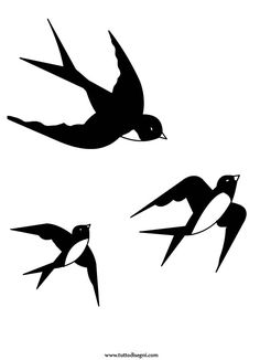 Le rondini in volo - TuttoDisegni.com Vogel Silhouette, Flying Bird Silhouette, Silhouette Art, Bird Drawings, Cartoon Drawings, Bird Template, Graffiti Lettering Fonts, Shape Posters, Coloring Pages For Boys